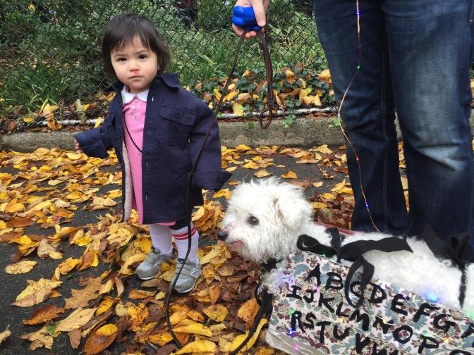 Tompkins Square Dog Park's Howloween 2016